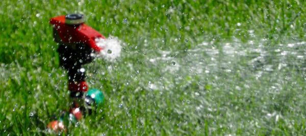 When To Water: What Works Best For Lawn And Garden Products?