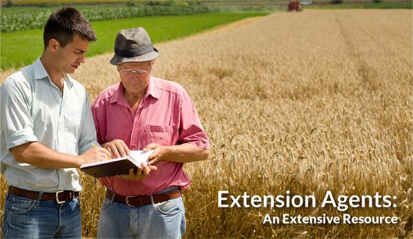 Extend your knowledge with your local extension agent