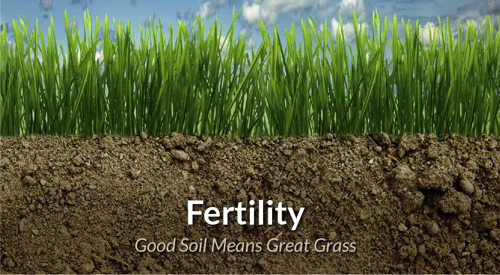 Determining soil fertility is the first step to a productive pasture