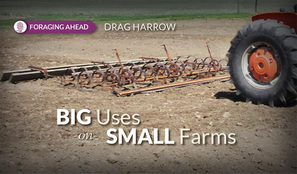 Foraging Ahead with Dr. Don Ball: Drag harrows aren't a drag for the livestock farmer