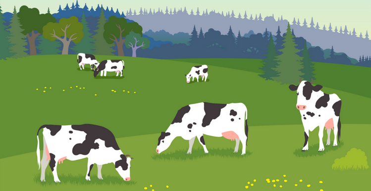 5 Ways To Celebrate National Dairy Month