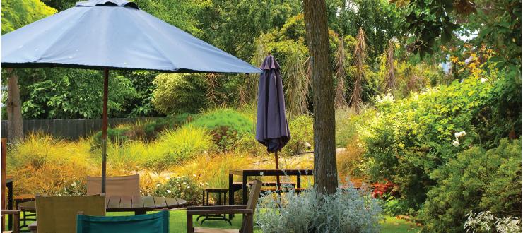 Rejuvenate Your Yard with Ragan & Massey