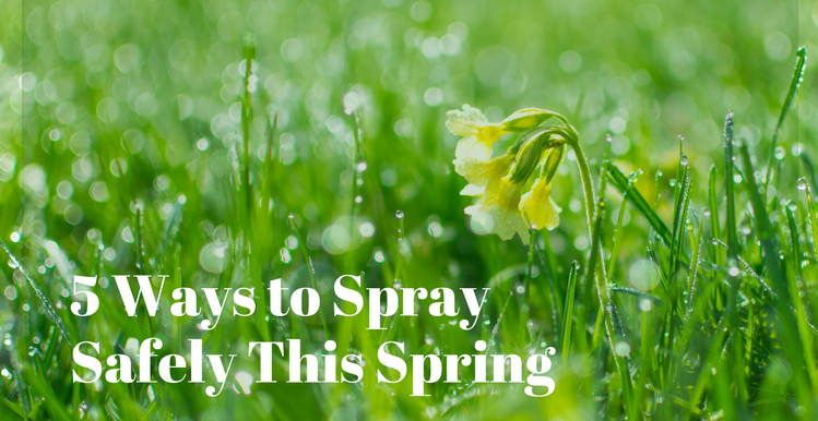 5 Ways To Spray Safely This Spring