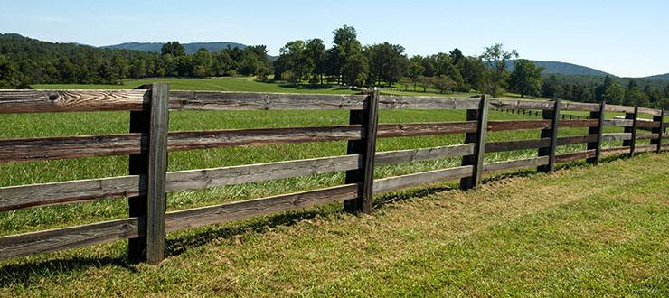 How To Get a Weed-Free Fence Line