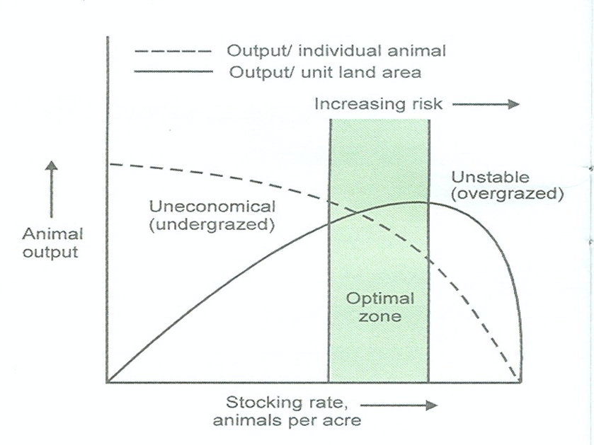 BASIC GRAZING CONCEPTS
