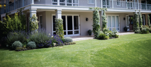 Top Tips for Late-Summer Lawn Care