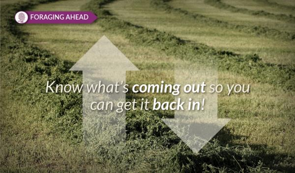 Foraging Ahead with Dr. Don Ball: Getting the most out of forage nutrients