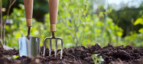 5 Steps To Take This Spring Before Planting A Garden