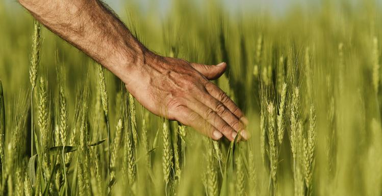 An Ode To The Modern American Farmer