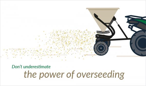 Improve pasture production by overseeding winter ryegrass