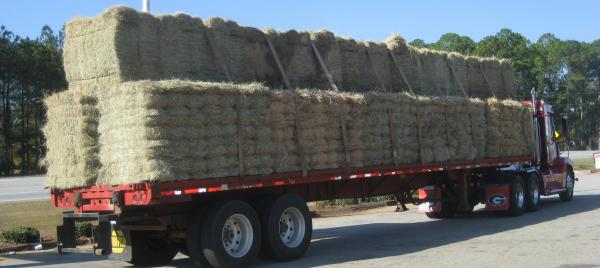 FORAGING AHEAD WITH DR. DON BALL: HAY TRANSACTIONS
