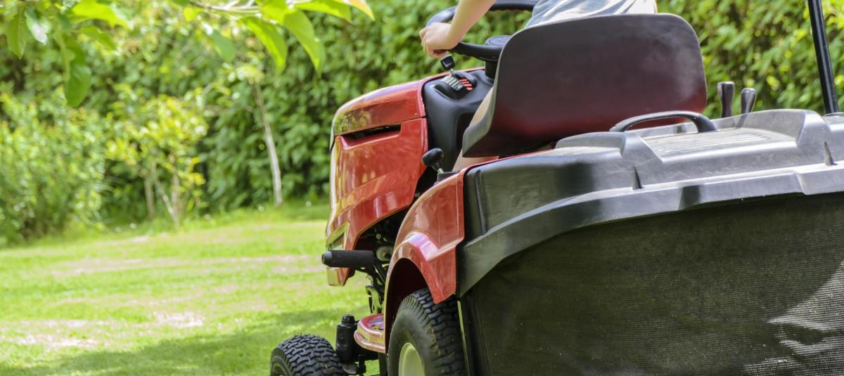 Your Comprehensive Guide to the Best Weed Killers