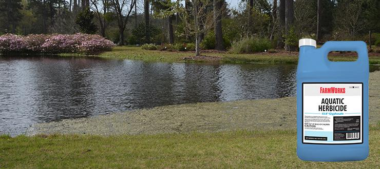 How to Use an Aquatic Herbicide