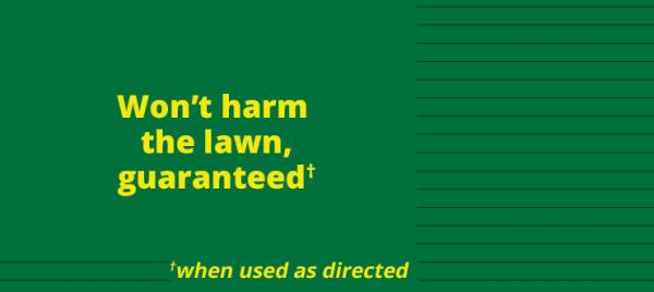 Kill The Weeds – Not The Lawn