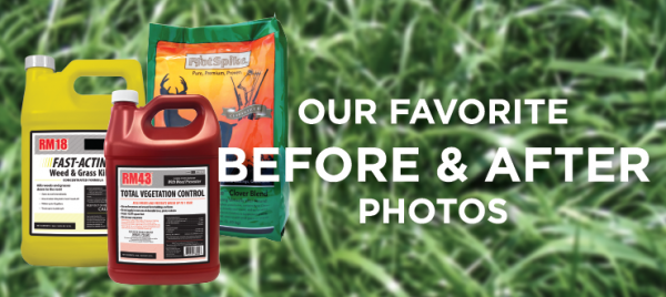Proof of How Great Our Products Work: Our Favorite Before and After Photos