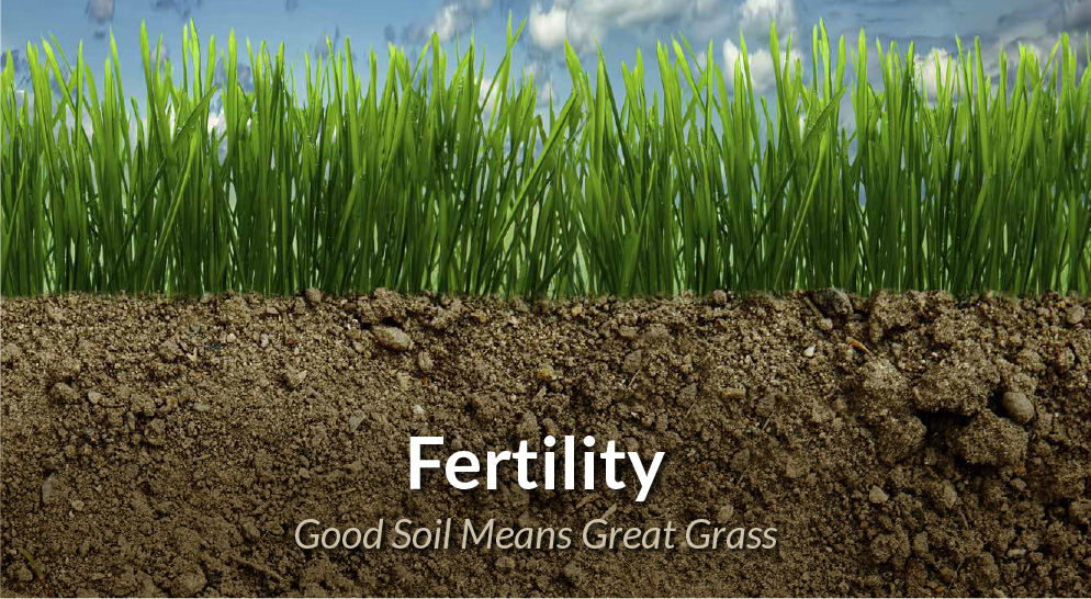 Ragan & Massey: Good Soil Means Great Grass