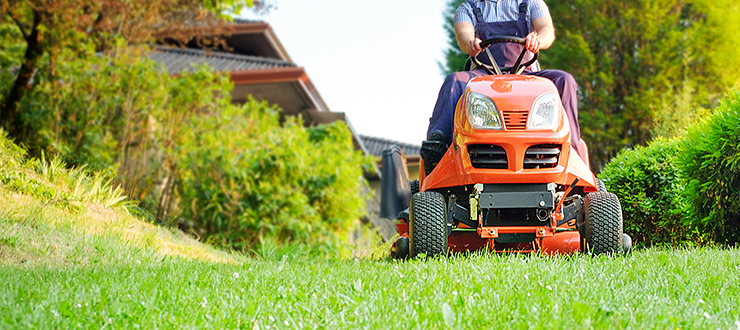 9 Lawn Myths Busted For 2019